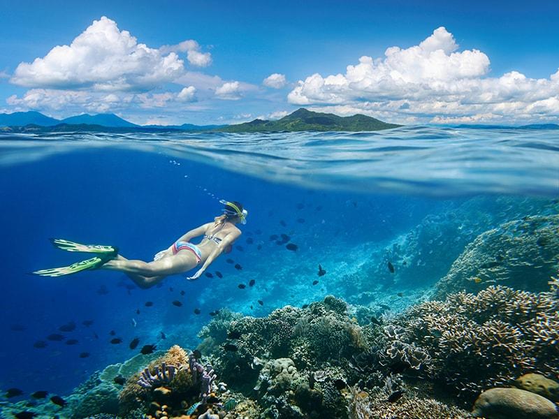 Indonesia. Bucear en Sulawesi