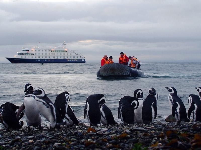 Argentina. Disfrutar de la belleza natural y salvaje de la Patagonia