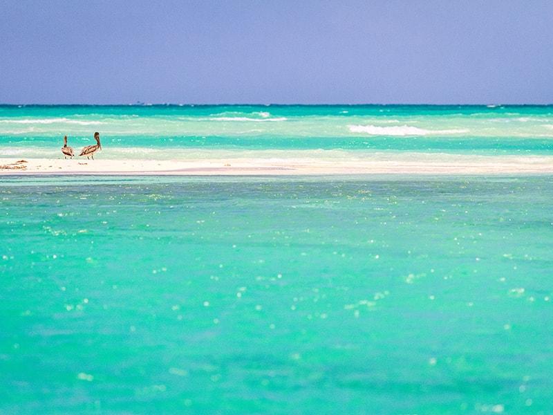 Playas de América. Ruta ecológica en la Reserva de Sian Ka´an